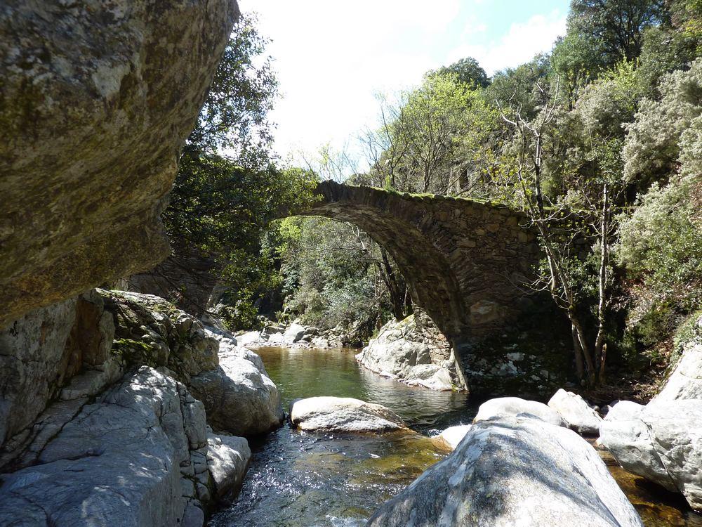 pont heric bardot